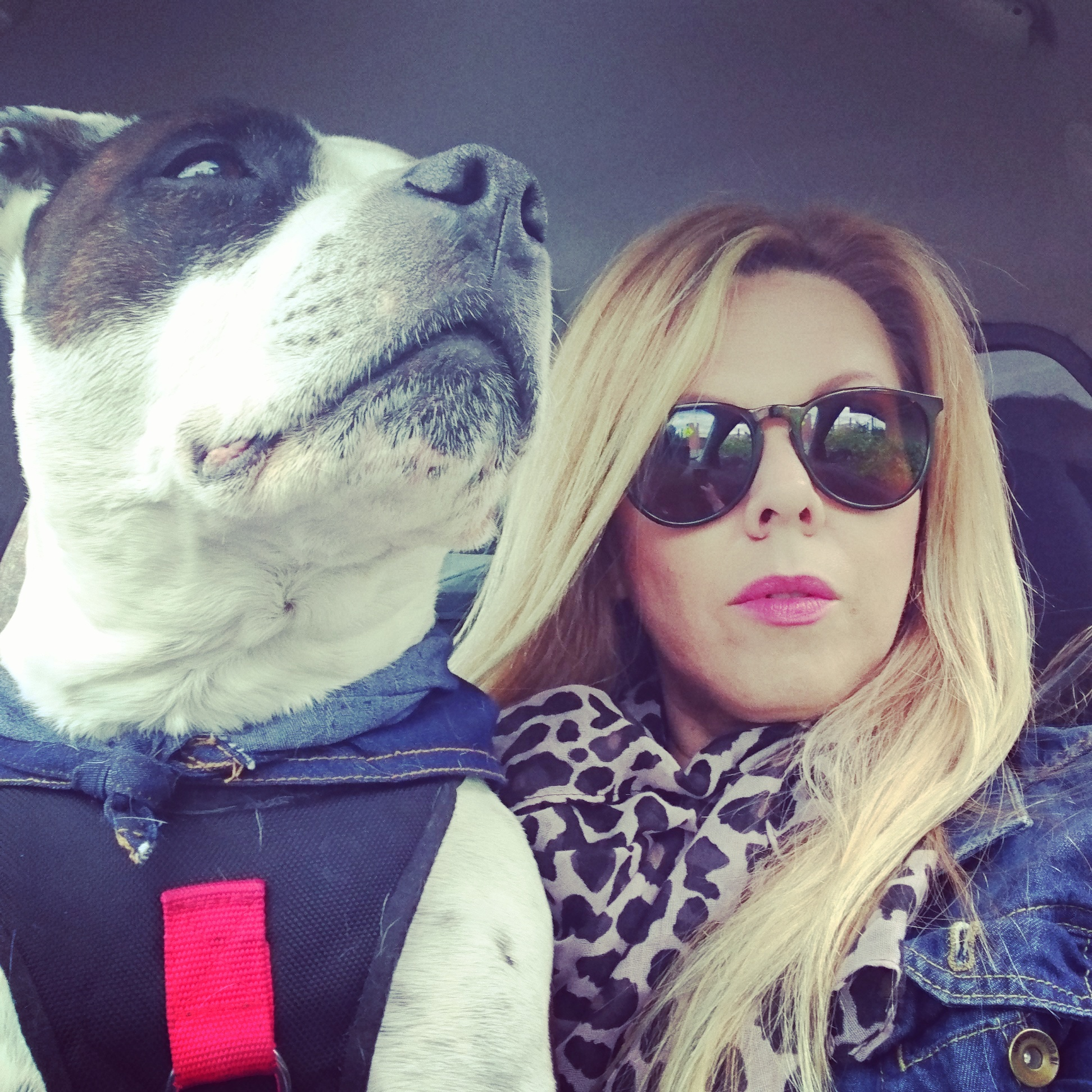 Kylie Clifford + Oscar