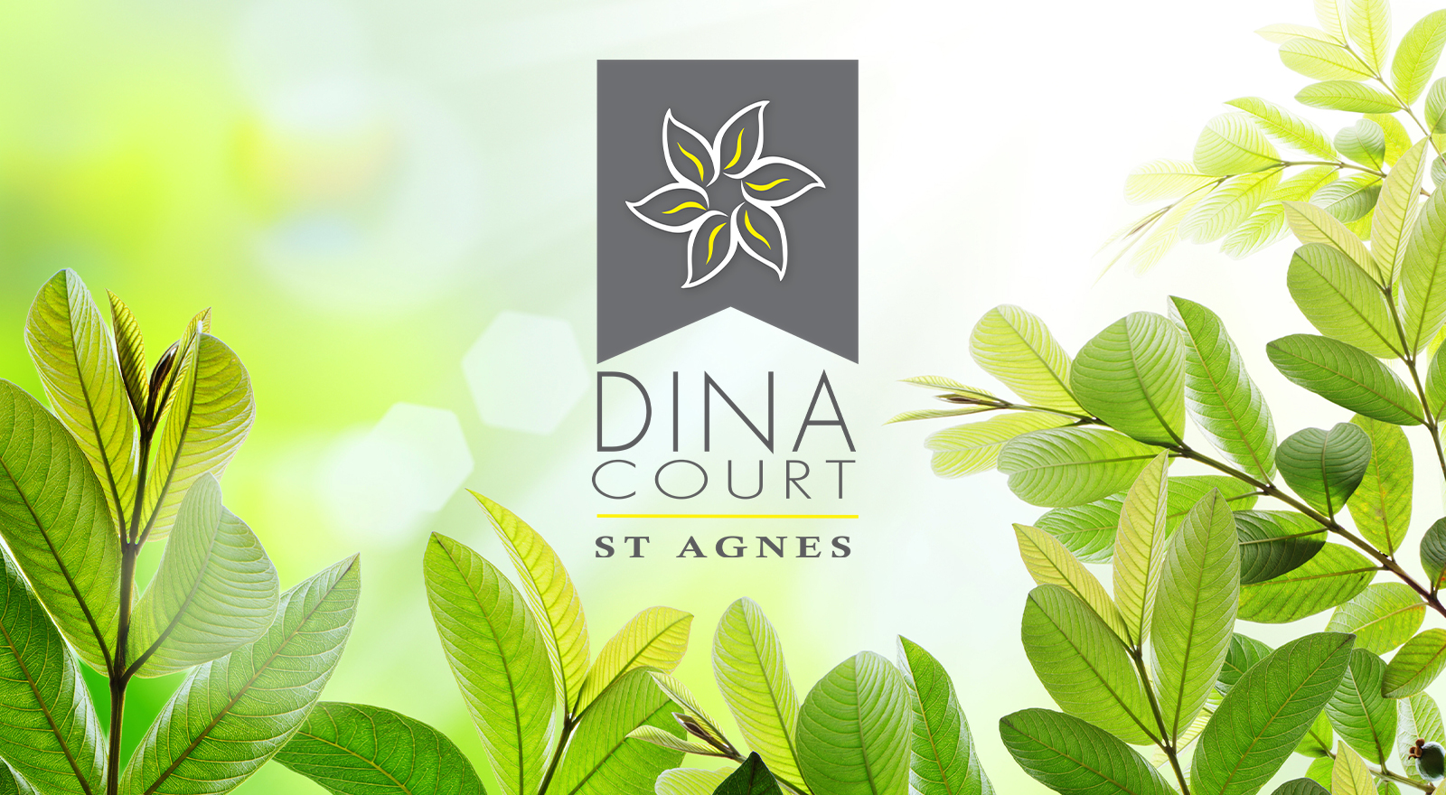 Logo Design for Dina Court St Agnes residential development